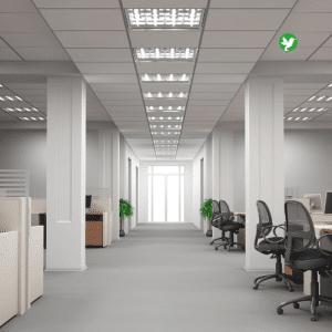 assurance multirisques bureaux