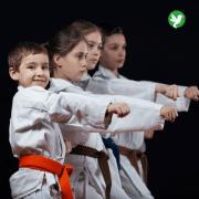 assurance karate