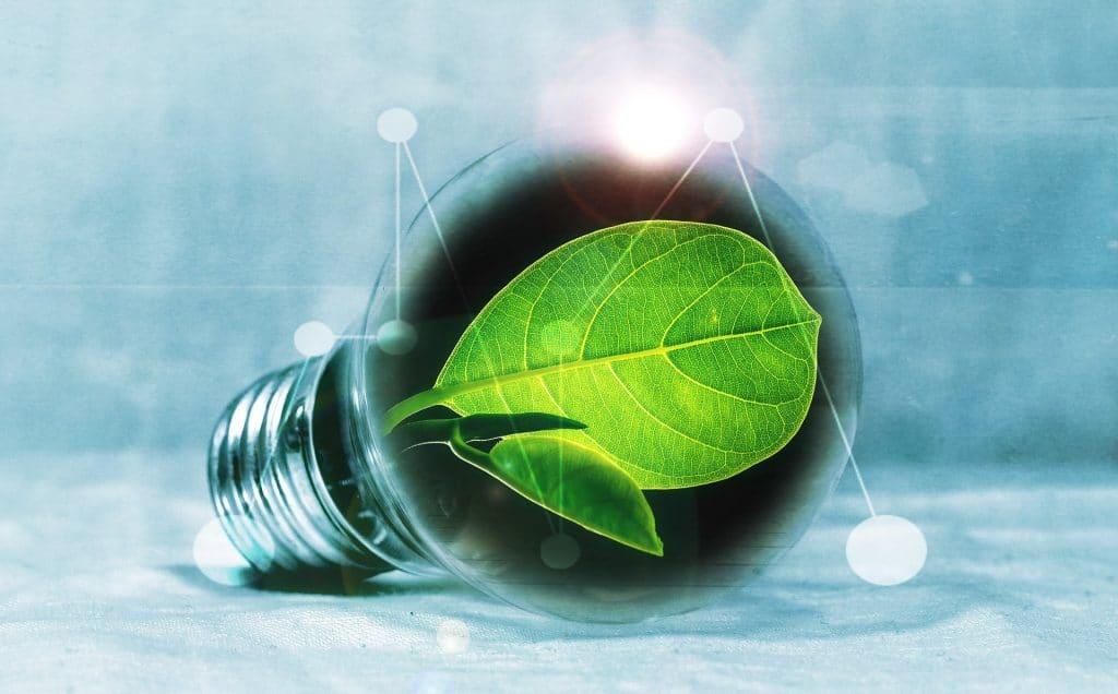 électricité ampoule