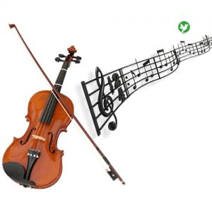 assurance violon