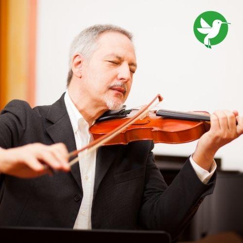 Assurer vos instruments comme le violon par exemple