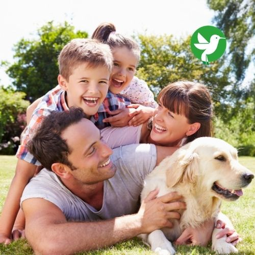Choisir une mutuelle santé pour ses animaux